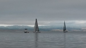 ID 35 Dark and Stormy and Express 37 Elan finishing YRA Drake's Bay Race 2014
